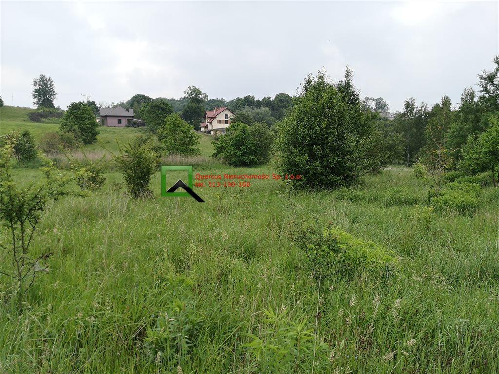 Działka budowlana na sprzedaż Krzeszowice  1850m2 Foto 2