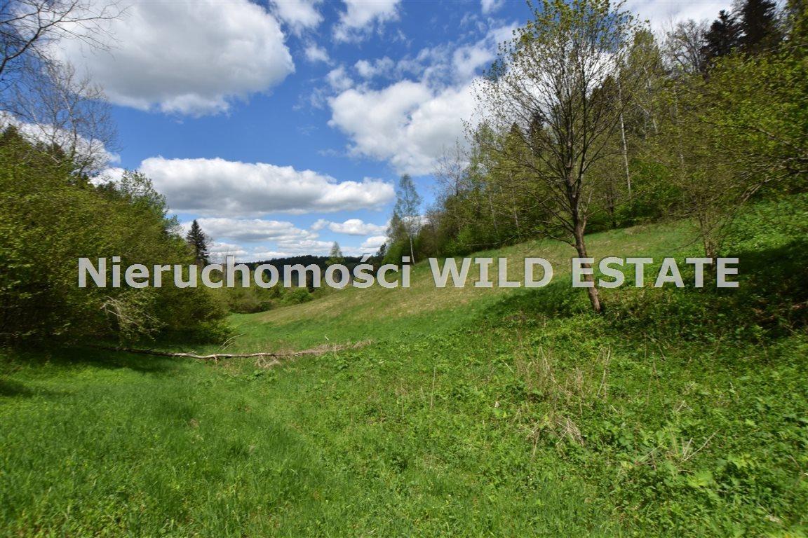 Działka rolna na sprzedaż Olszanica  17148m2 Foto 4