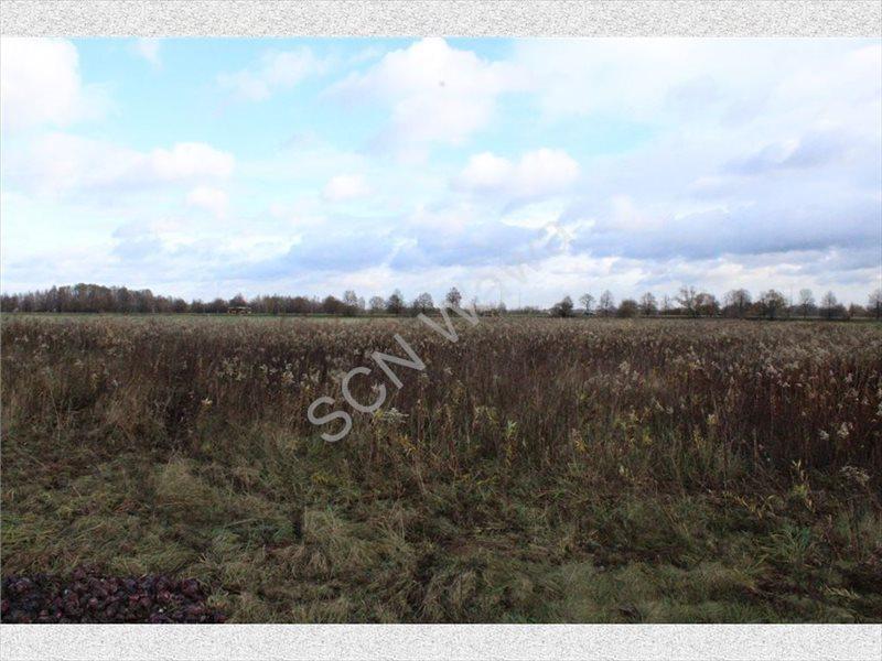 Działka rolna na sprzedaż Warszawa, Wilanów  4388m2 Foto 7