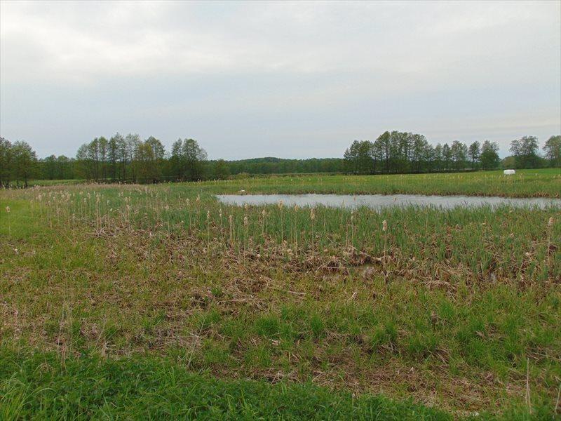 Działka rolna na sprzedaż Kępa Mała  15000m2 Foto 9