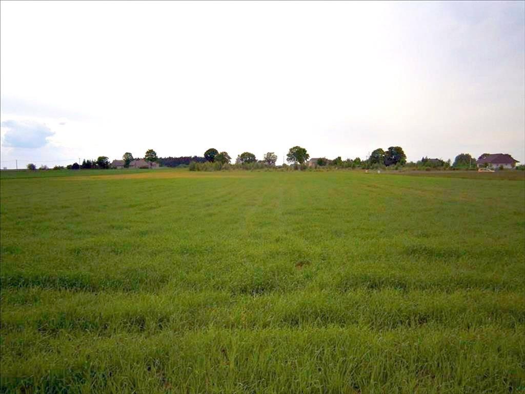 Działka rolna na sprzedaż Kobylniki, Rokietnica  20300m2 Foto 1
