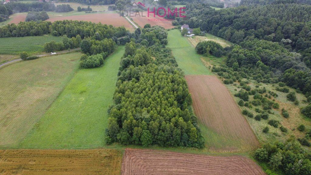 Działka leśna na sprzedaż Śliwnica  14500m2 Foto 2