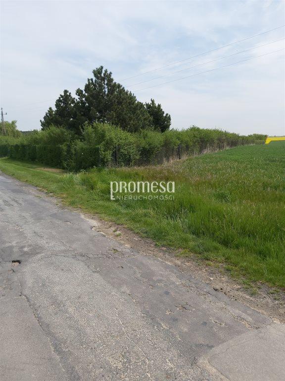 Działka rolna na sprzedaż Brzezia Łąka, Długołęka  16900m2 Foto 5