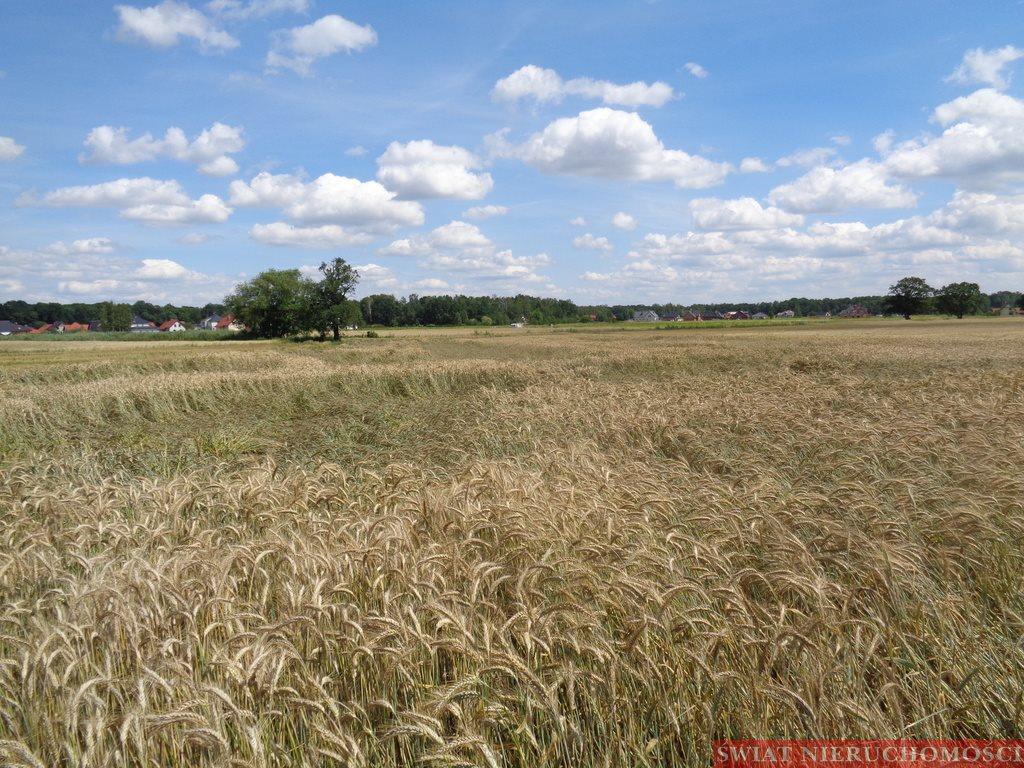 Działka rolna na sprzedaż Szczodre  34000m2 Foto 1