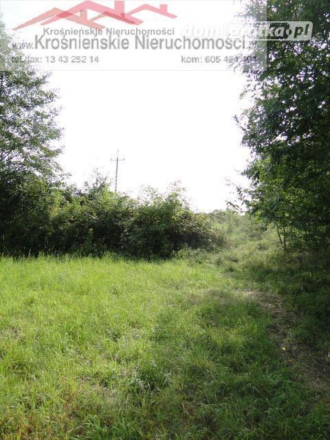 Działka rolna na sprzedaż Odrzykoń  1500m2 Foto 2