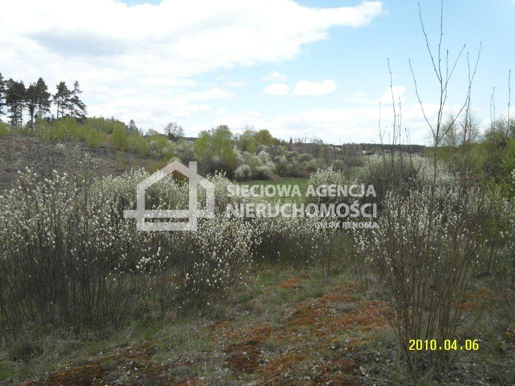 Działka leśna na sprzedaż Huta Kalna  20250m2 Foto 6