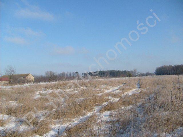 Działka rolna na sprzedaż Mszczonów  9700m2 Foto 3
