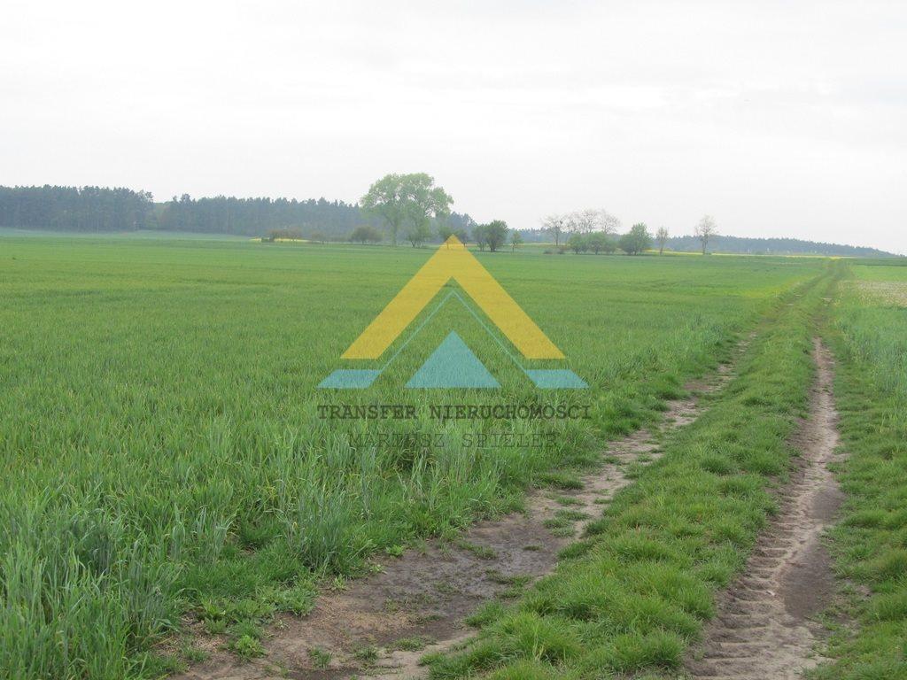 Działka siedliskowa na sprzedaż Choszczno  3090m2 Foto 5