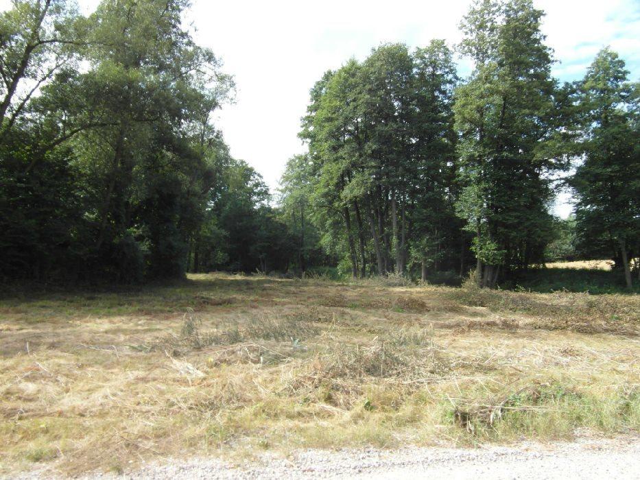 Działka budowlana na sprzedaż Krakowiany  7100m2 Foto 9