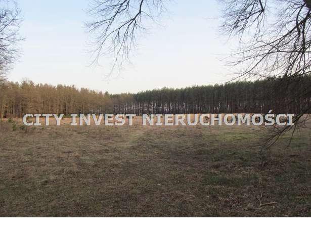 Działka siedliskowa na sprzedaż Zielona Góra, Kiełpin  16700m2 Foto 5
