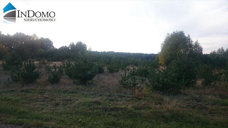 Działka rolna na sprzedaż Sulejów, Bilska Wola  1200m2 Foto 1