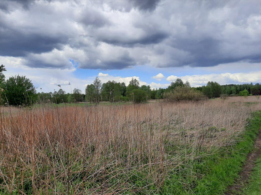 Działka rolna na sprzedaż Stare Babice, Wojcieszyn  1400m2 Foto 6