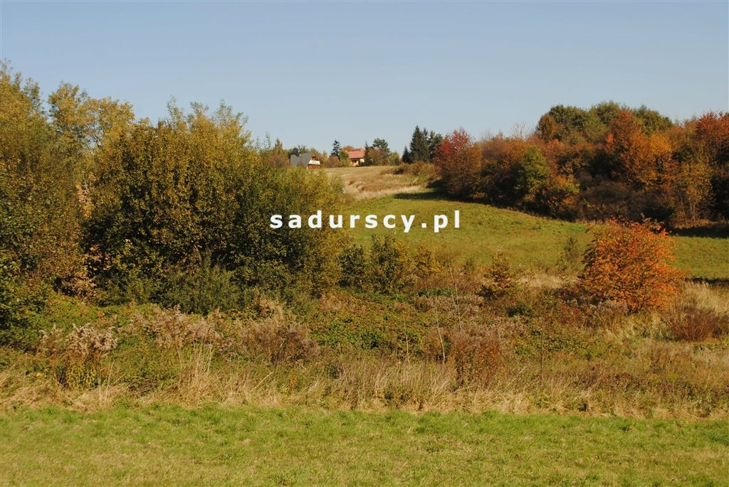 Działka rolna na sprzedaż Kraków, Swoszowice, Rajsko, Golkowicka  2761m2 Foto 4