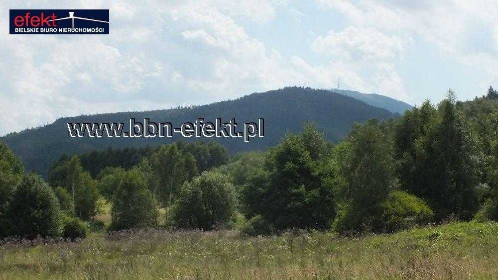Działka budowlana na sprzedaż Buczkowice  3900m2 Foto 5