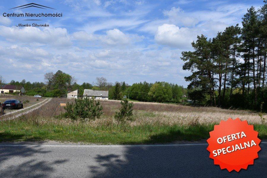 Działka siedliskowa na sprzedaż Małe Łunawy  16900m2 Foto 9