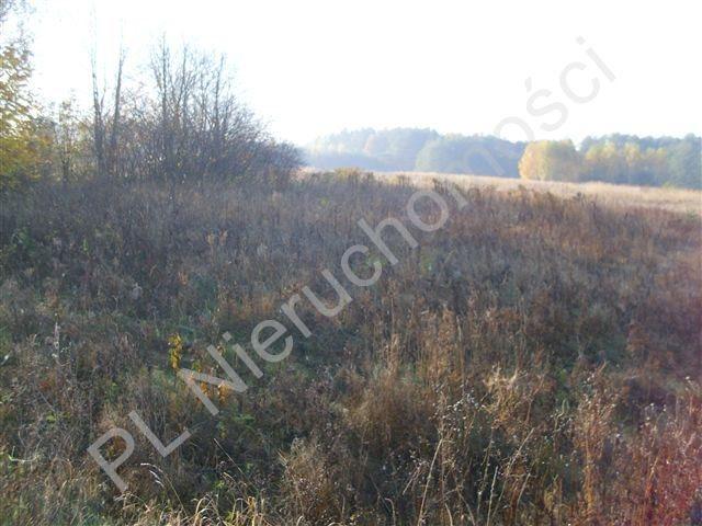 Działka rolna na sprzedaż Gurba  11800m2 Foto 3