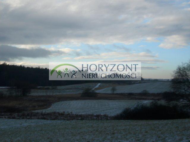 Działka przemysłowo-handlowa na sprzedaż Żukowo  28520m2 Foto 10