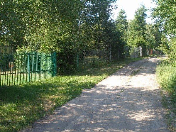 Działka siedliskowa na sprzedaż Parlino  11000m2 Foto 5