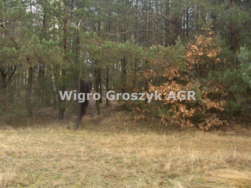Działka leśna na sprzedaż Stanisławów  3076m2 Foto 5