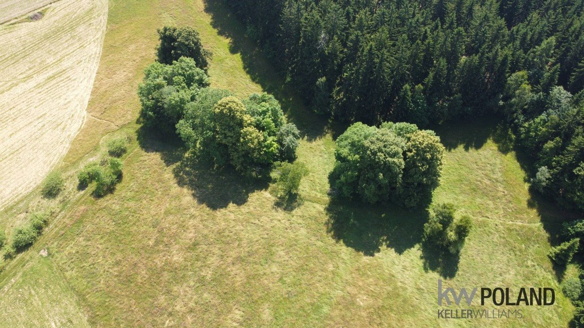 Działka rolna na sprzedaż Kudowa-Zdrój, Pstrążna  4386m2 Foto 6