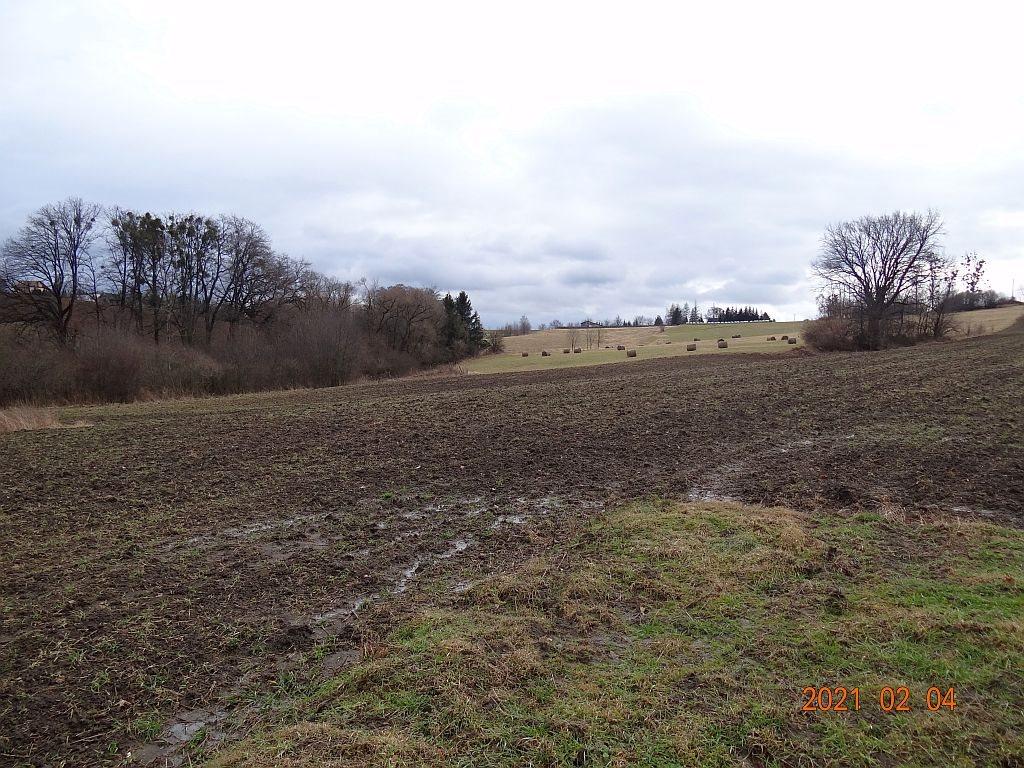Działka rolna na sprzedaż Puńców, Wielogroga  9880m2 Foto 5