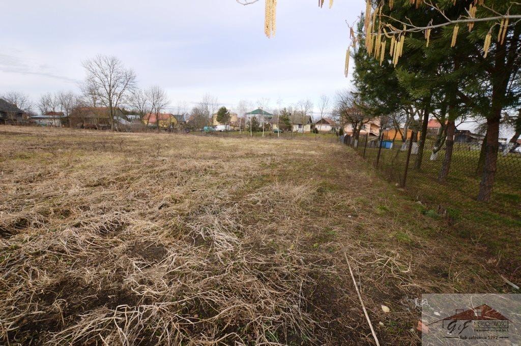 Działka budowlana na sprzedaż Leszno  4605m2 Foto 4
