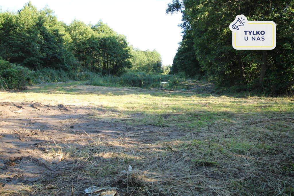 Działka leśna na sprzedaż Daniszewo  7000m2 Foto 1