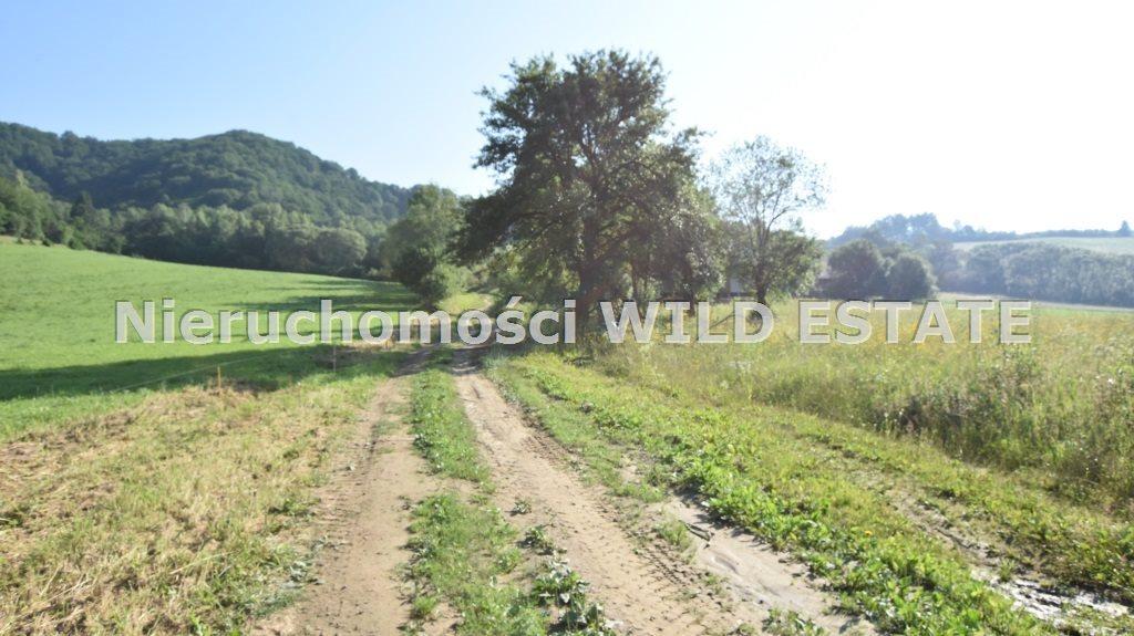 Działka rolna na sprzedaż Solina, Rajskie  5700m2 Foto 1