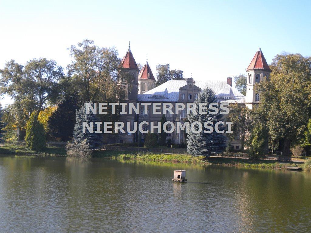 Lokal użytkowy na sprzedaż Dąbrówka Wielkopolska  4500m2 Foto 9