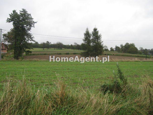 Działka rolna na sprzedaż Brzoskwinia  1200m2 Foto 1