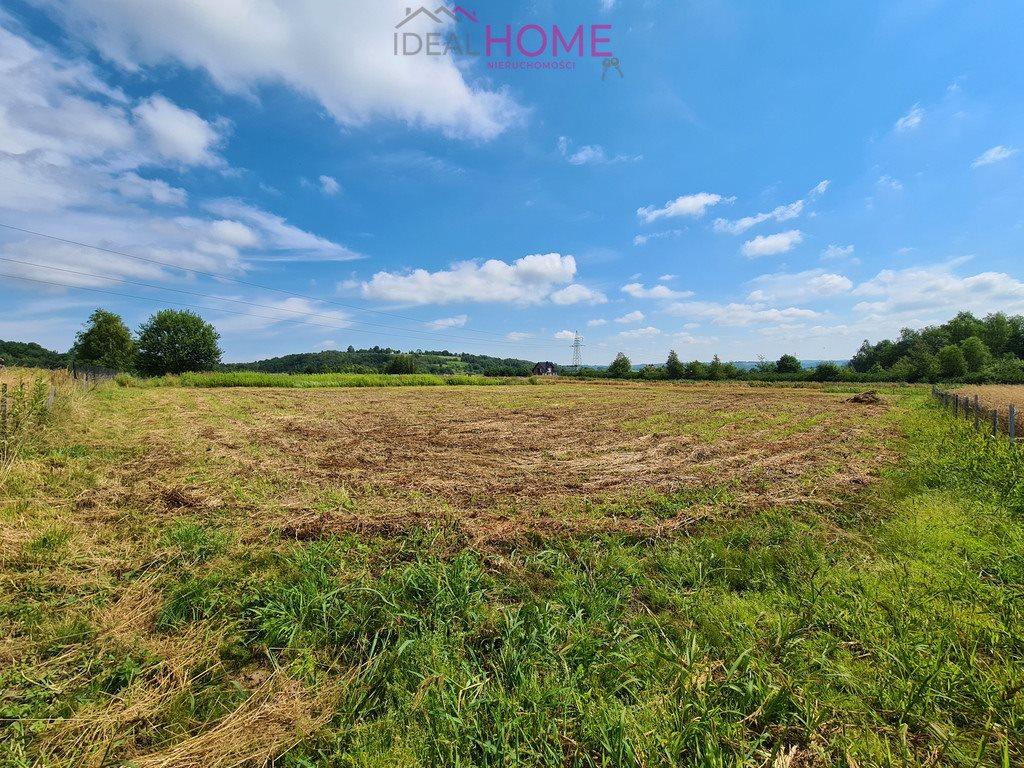 Działka rolna na sprzedaż Hermanowa  5100m2 Foto 3