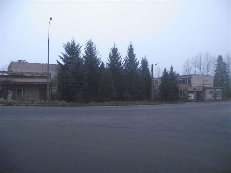 Lokal użytkowy na wynajem Nowogród Bobrzański  600m2 Foto 3