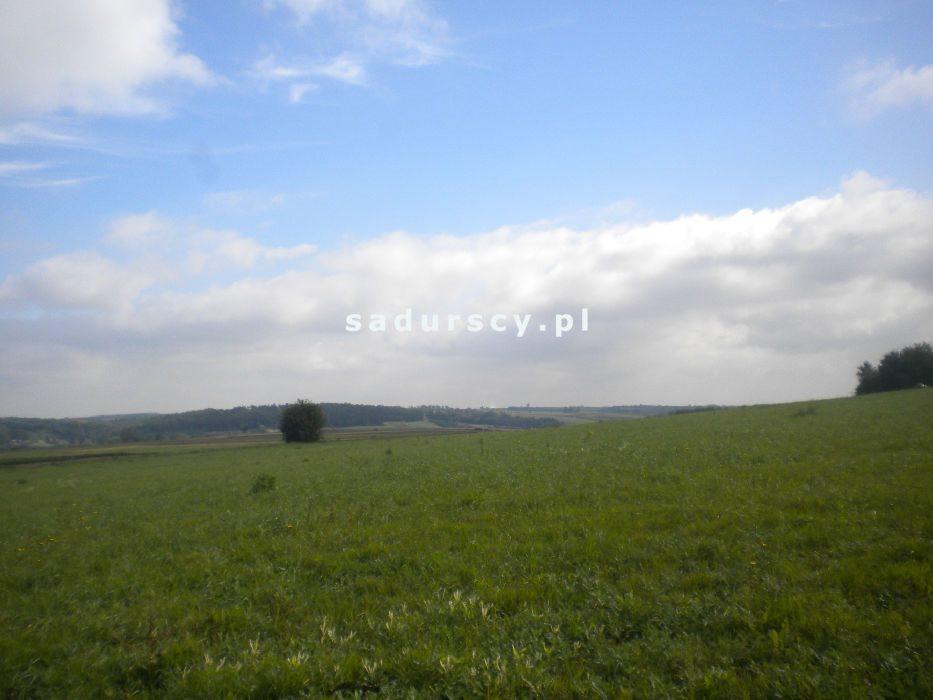 Działka rolna na sprzedaż Gołyszyn  28520m2 Foto 8