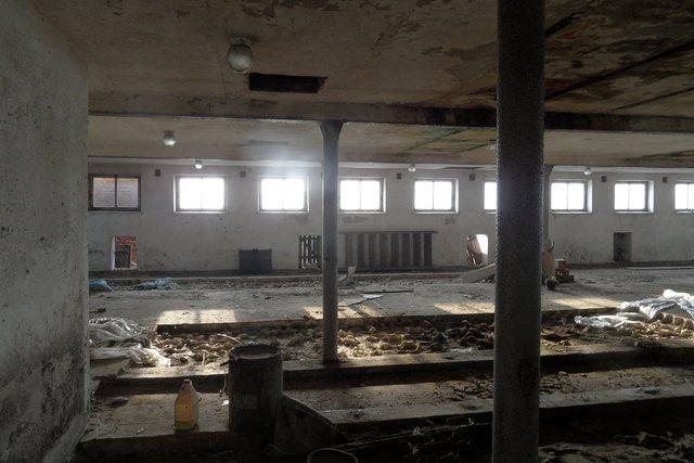 Działka budowlana na sprzedaż Olsza  12000m2 Foto 6