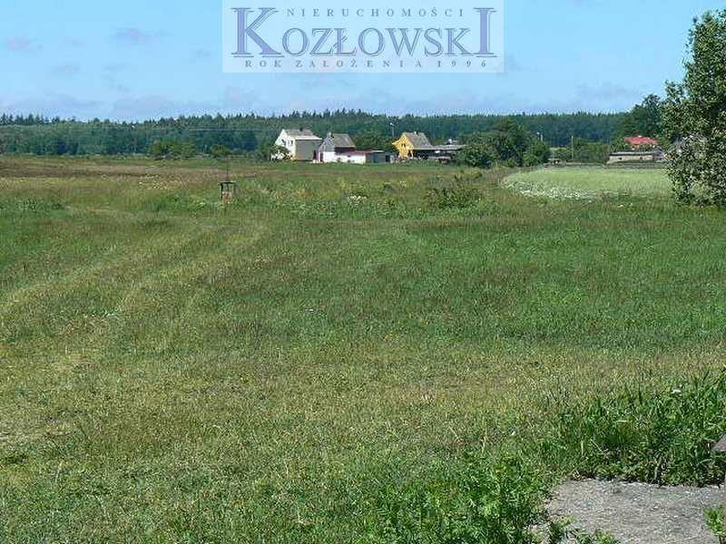 Działka komercyjna na sprzedaż Bojano, Lesoki  5000m2 Foto 4
