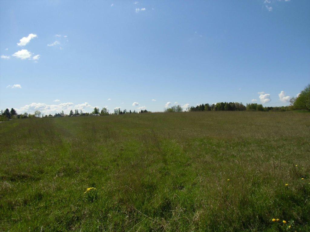 Działka rolna na sprzedaż Bojano, Wołoszyna  180000m2 Foto 3