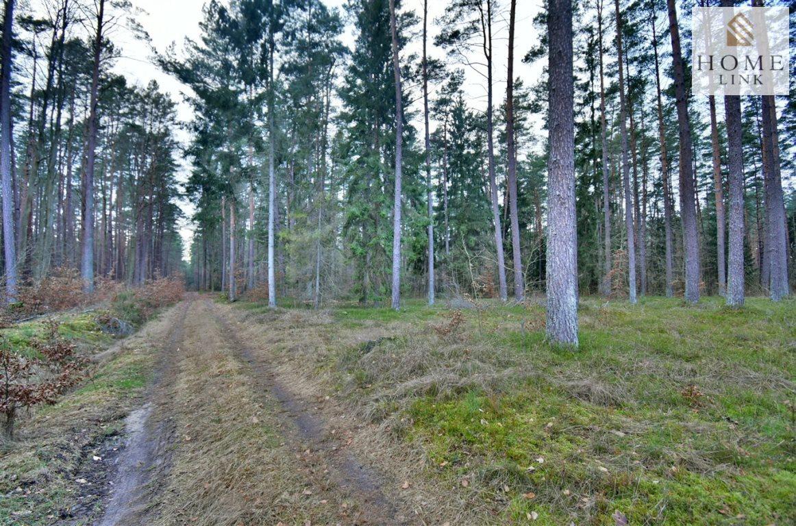 Działka leśna na sprzedaż Warkały  47800m2 Foto 4