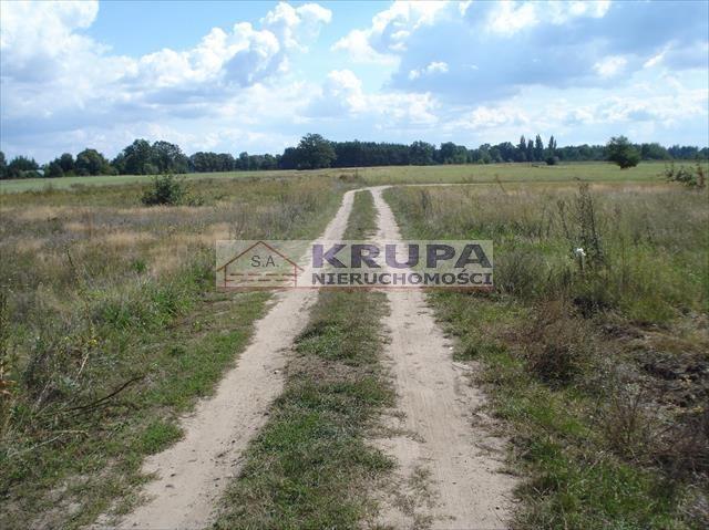 Działka rolna na sprzedaż Jachranka, Letnia (1)  970m2 Foto 3
