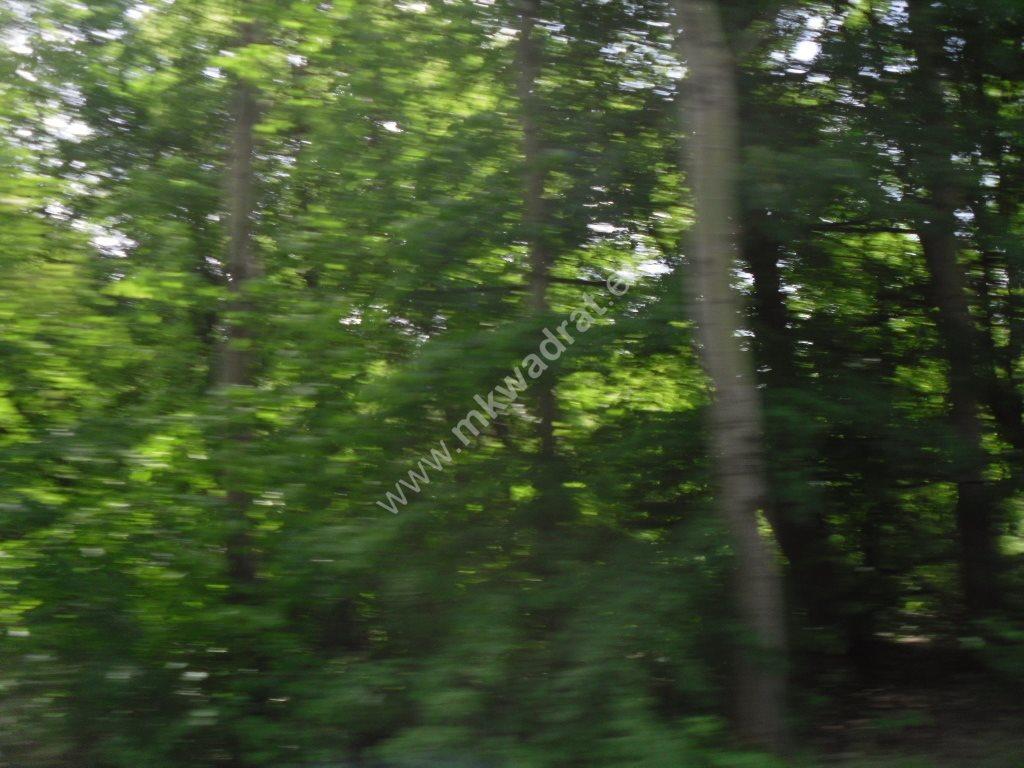 Działka siedliskowa na sprzedaż Sowia Wola  75115m2 Foto 5