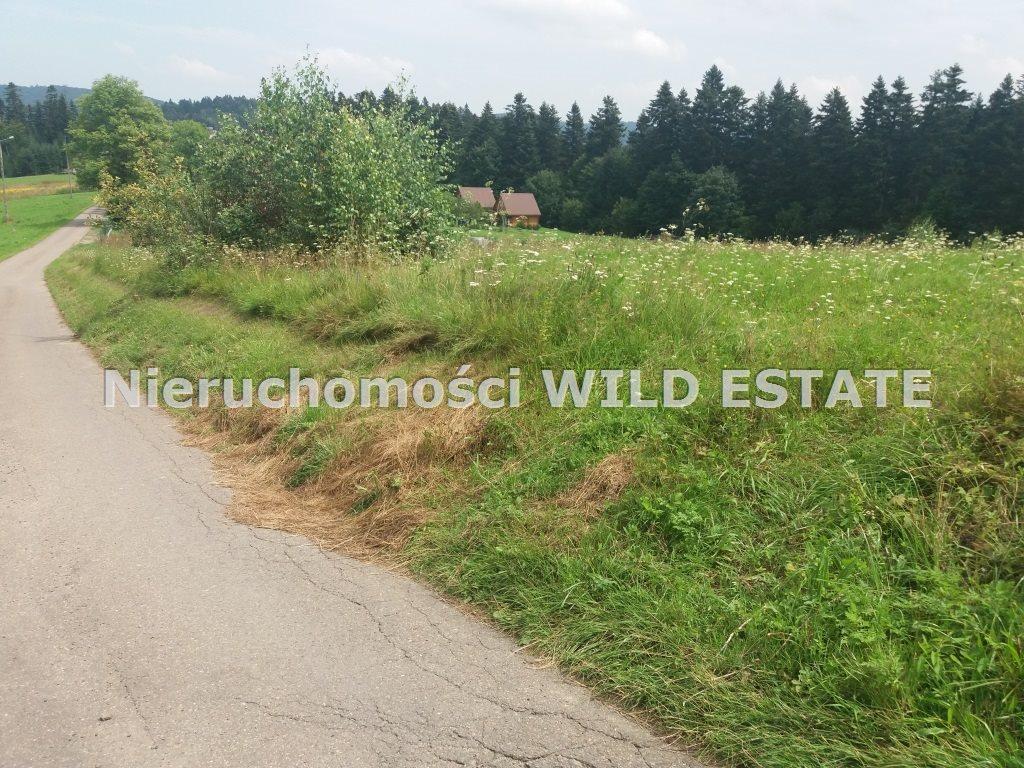 Działka rolna na sprzedaż Solina, Werlas  5011m2 Foto 4