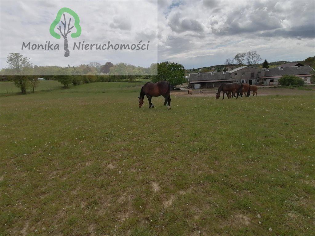 Lokal użytkowy na sprzedaż Szczerbięcin  93200m2 Foto 3