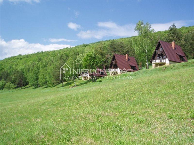 Lokal użytkowy na sprzedaż Dukla, Olchowiec  41600m2 Foto 2