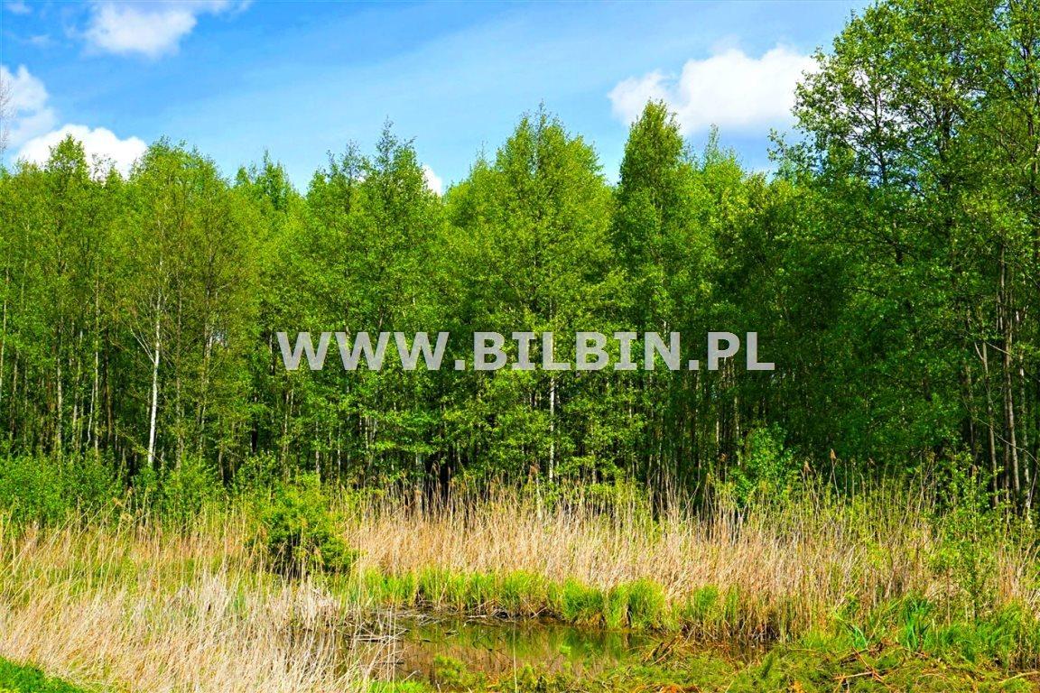 Działka siedliskowa na sprzedaż Kotowina  5666m2 Foto 4