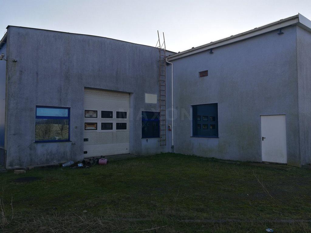 Lokal użytkowy na wynajem Ciechocinek, ul. Południowa  1000m2 Foto 3