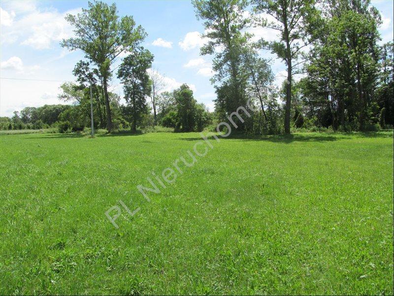 Działka rolna na sprzedaż Szymankowszczyzna  16600m2 Foto 9