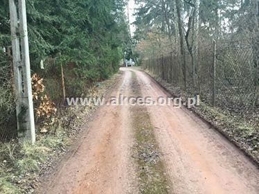Działka leśna na sprzedaż Henryków-Urocze  27900m2 Foto 7