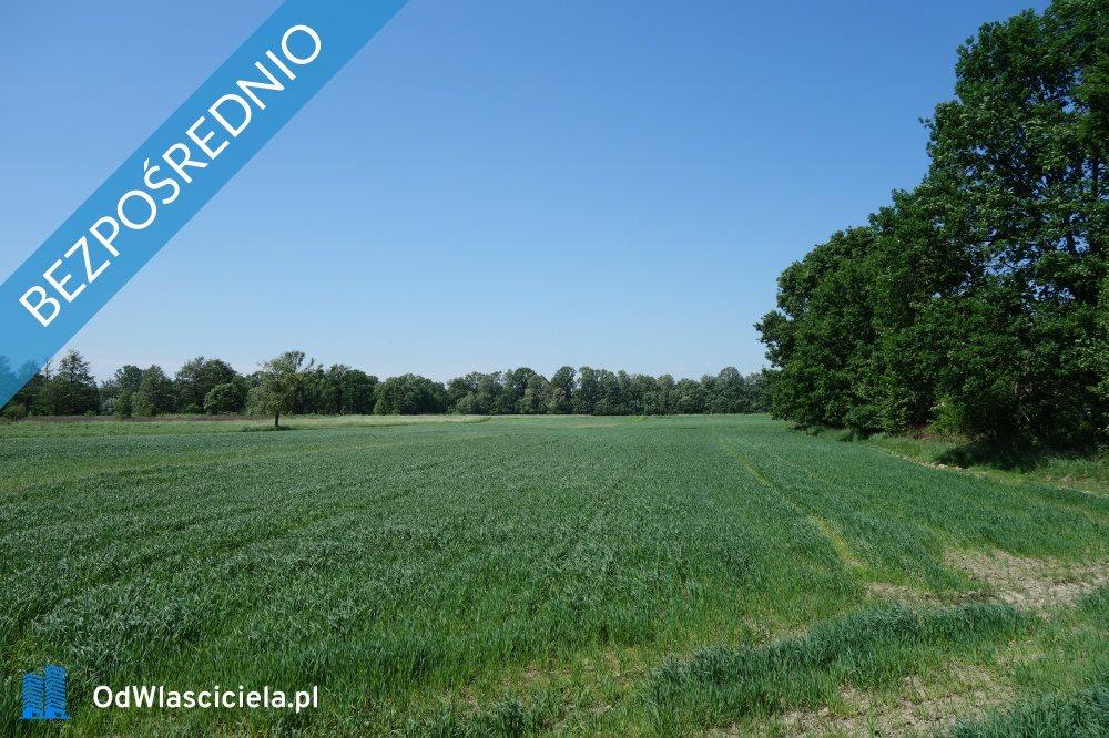Działka rolna na sprzedaż Skoczów  6200m2 Foto 2