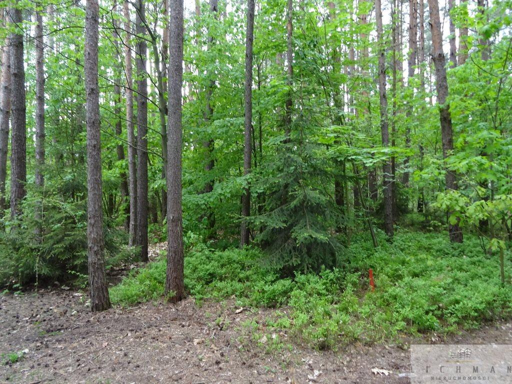 Działka leśna z prawem budowy na sprzedaż Kwiatkowice-Las  2420m2 Foto 7