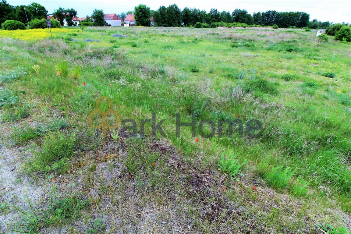 Działka przemysłowo-handlowa na sprzedaż Nowa Sól, Otyń  4300m2 Foto 4
