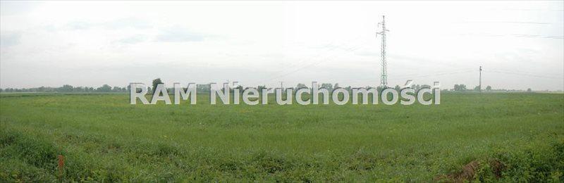 Działka inna na sprzedaż Serby  3500m2 Foto 1